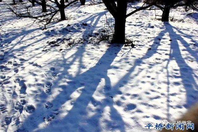 【书香苑】冬日夜读,热气腾腾的诗歌体~