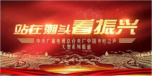 央广网:站在潮头看振兴  绿化美化,郝堂村彰显乡村价值