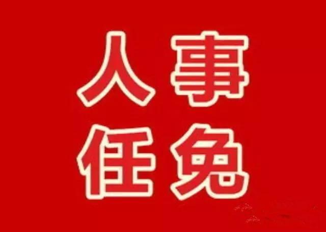 平桥区人大常委会任免名单