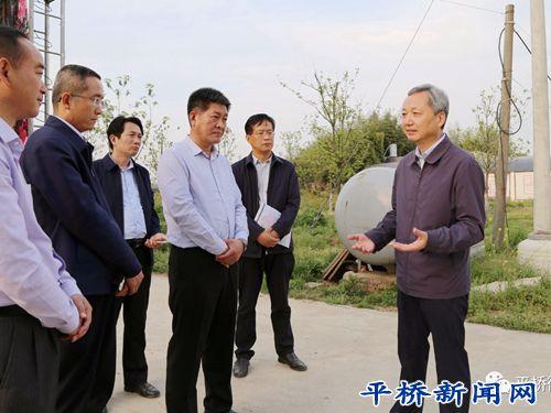 市长尚朝阳莅临平桥区调研全域旅游和乡村振兴工作