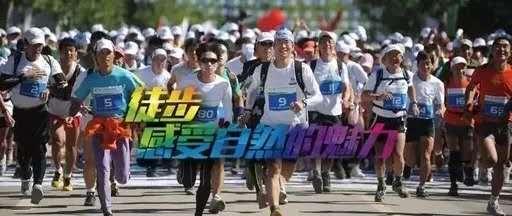 """关于第二届""""荣业杯""""信阳国际徒步大会期间实行临时交通管制的通告"""