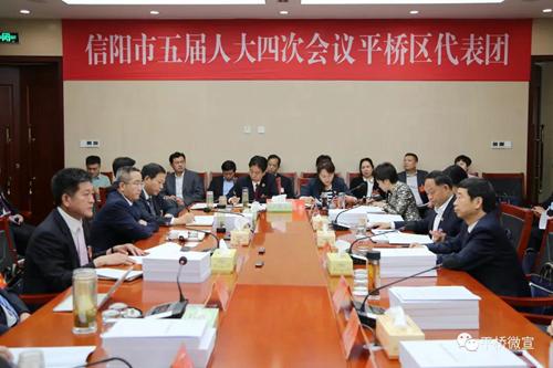 乔新江参加市五届人大四次会议平桥区代表团审议