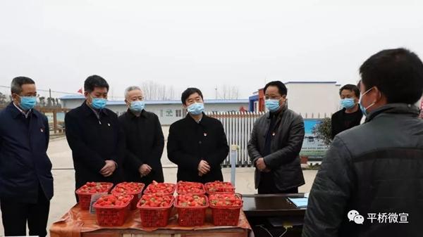 乔新江到平桥区检查疫情防控和春耕生产工作